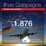 Passagens para as <b>ILHAS GALÁPAGOS</b>, saindo de São Paulo ou do Rio de Janeiro! A partir de R$ 1.876, ida e volta!