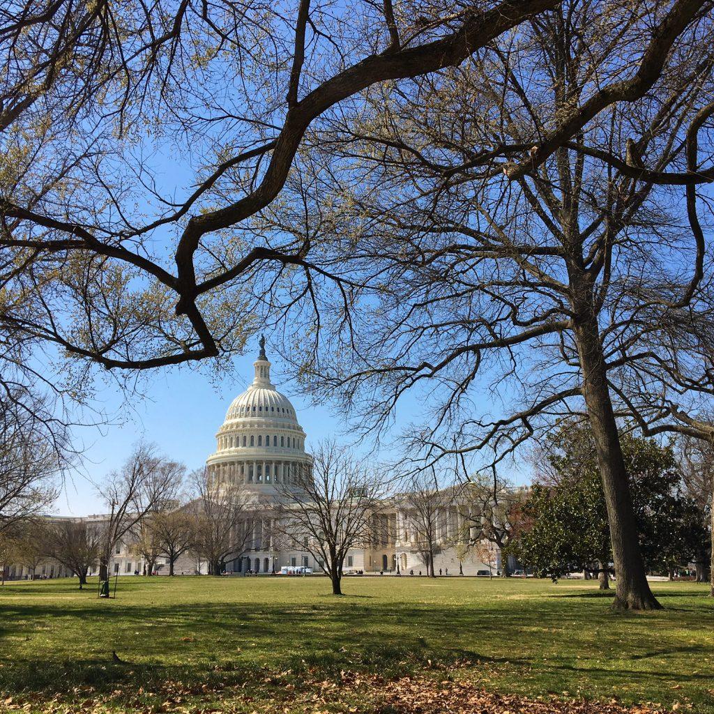 Que tal visitar o Capitólio, um dos lugares que mais aparece em filmes e séries gravados em Washington D.C.?