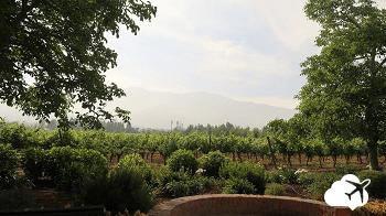 Vinicola em Santiago Chile