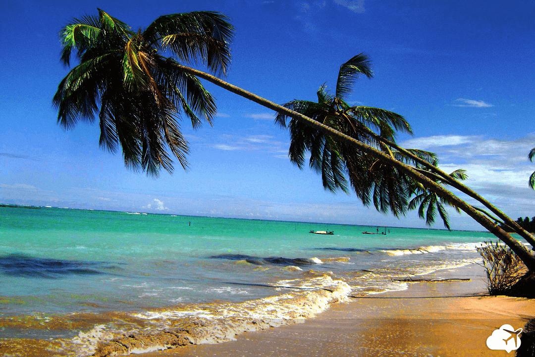 Praia deserta São Miguel dos Milagres Alagoas
