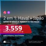 Promoção de Passagens 2 em 1 – <b>HAVAÍ + JAPÃO</b>! A partir de R$ 3.559, todos os trechos, c/ taxas!