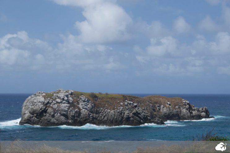 praia do leao fernando de noronha