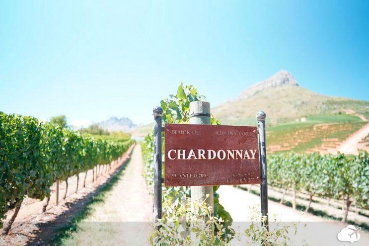 vinicola delaire stellenbosch