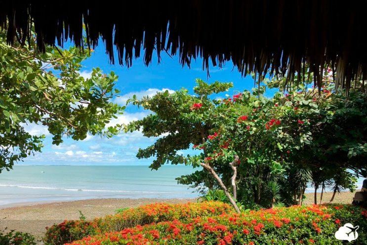 vista praia jericoacoara