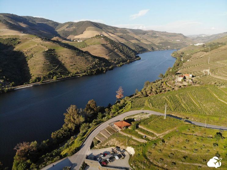 enoturismo vinicolas douro portugal