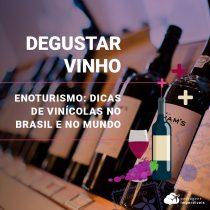 Enoturismo: dicas de vinícolas no Brasil e no mundo