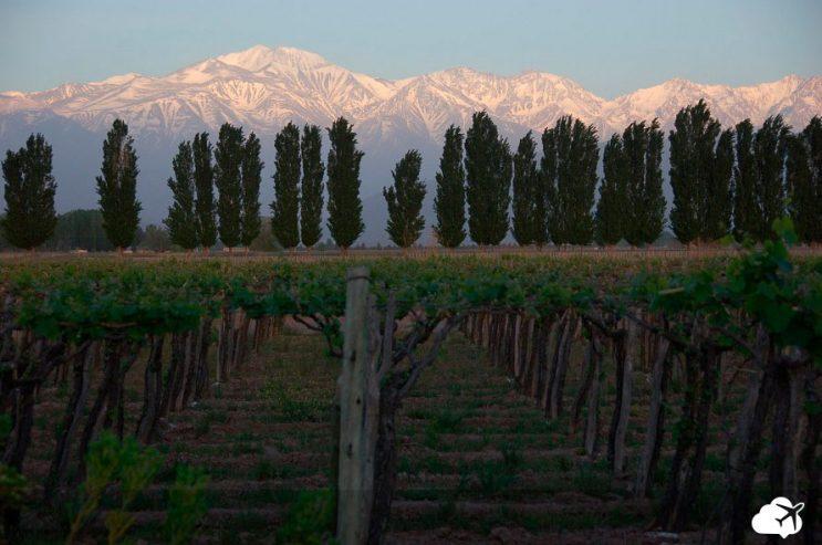 enoturismo vinicola em mendoza argentina