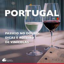 Passeio no Douro, Portugal: dicas e roteiro de vinícolas
