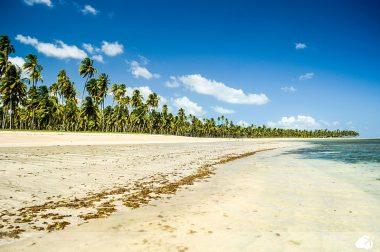 são miguel dos milagres é uma das praias no brasil