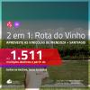 ROTA DO VINHO!!! Promoção de Passagens 2 em 1 – <b>ARGENTINA: Mendoza + CHILE: Santiago</b>! A partir de R$ 1.511, todos os trechos, c/ taxas!