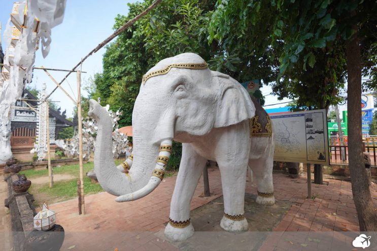 elefante branco wat lok molee