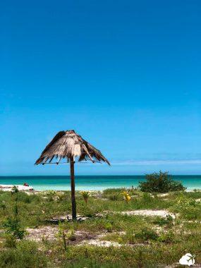 praia de holbox cancun e arredores