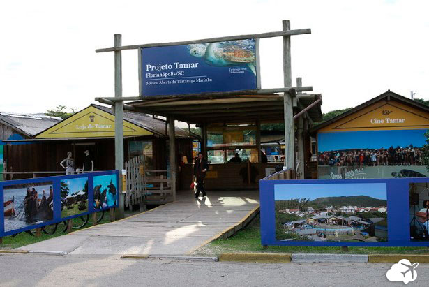 Projeto Tamar em Florianópolis