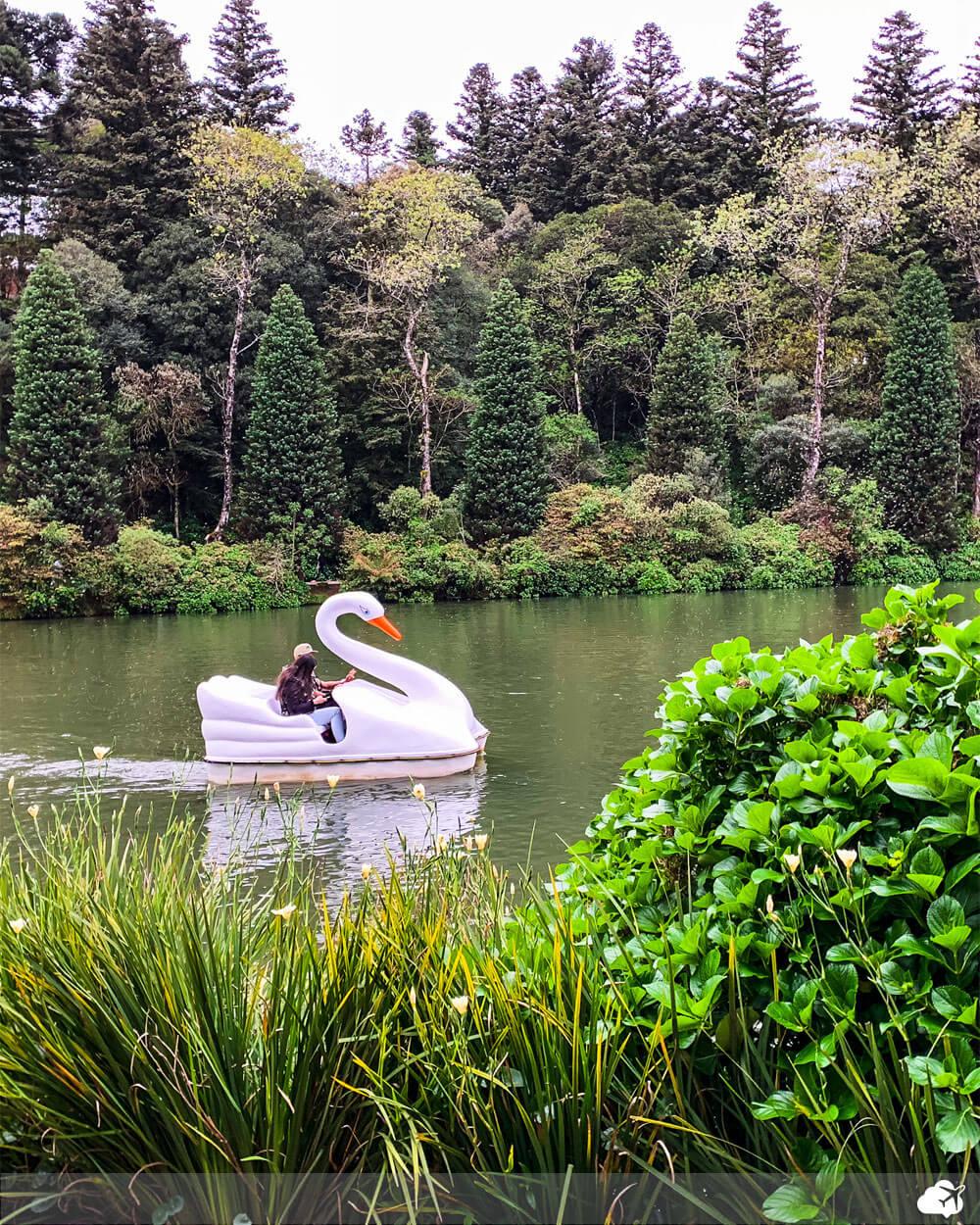 pedalinho lago negro