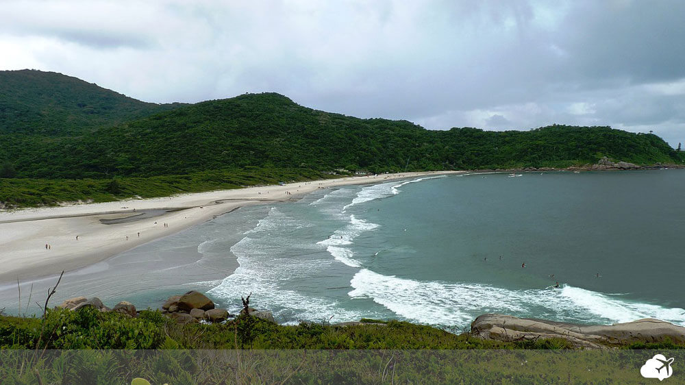 praia naufragados floripa