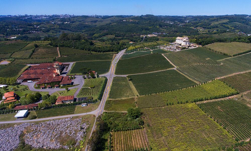 estrada em Bento Gonçalves para visitar vinícolas